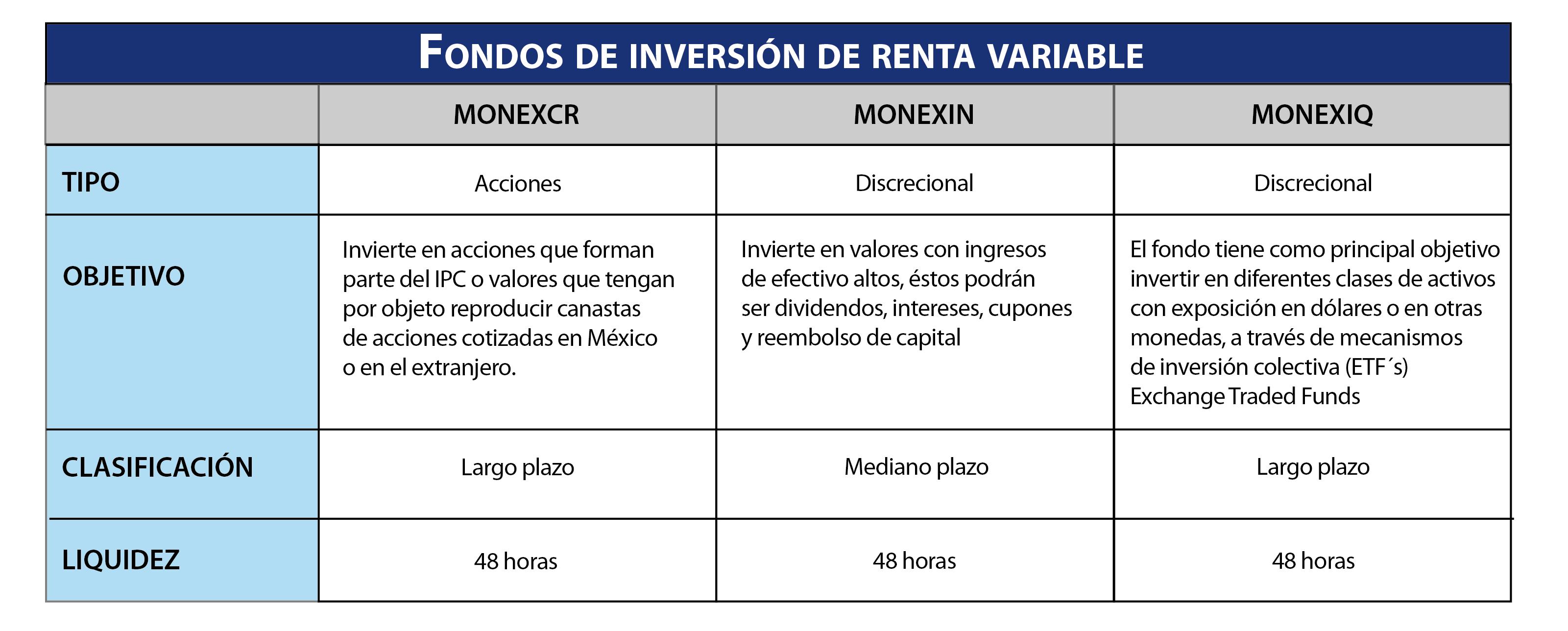 Fondos de inversión renta variable