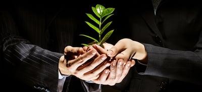 BMV y el mercado de deuda verde