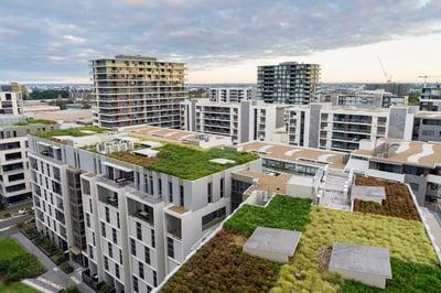Azoteas verdes, beneficios económicos y ecológicos